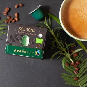 Bologna kvadrat